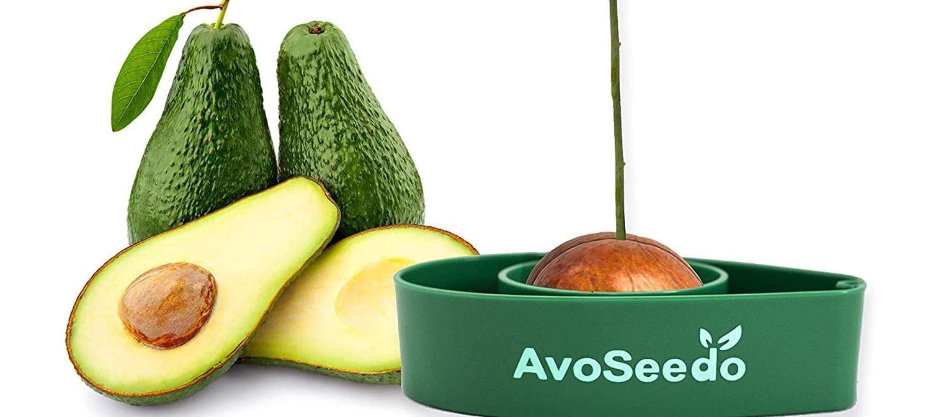 Avoseedo – Das Gadget für Hobby Gärtner